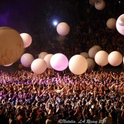Live Concert Photography by Natalia Faulkner 2009 - 2013 (15)