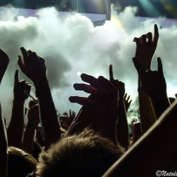 Concert Photography by N. Faulkner